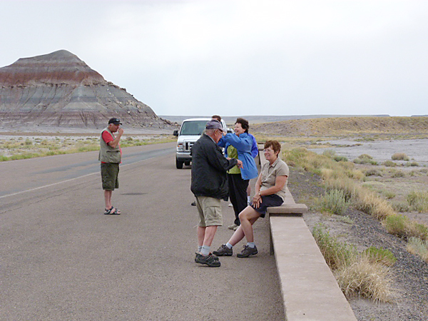 Birdfinders at the Petrified Forest