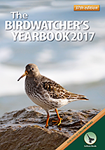 Birdwater's Yearbook cover