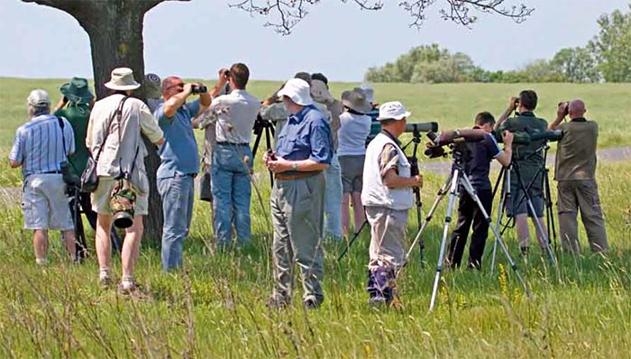 Birdfinders group in Hungary 2007