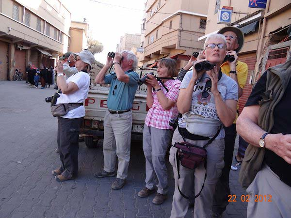 Birdfinders in Morocco