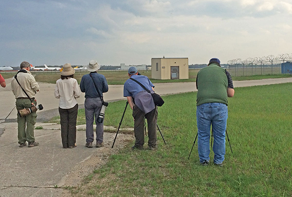 Birdfinders' group watching Snowy Owl