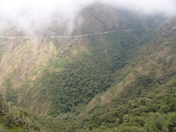 Manu Road through the cloud forest